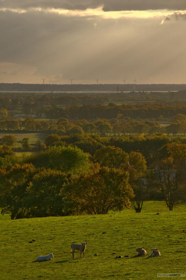 Výhľad na údolie