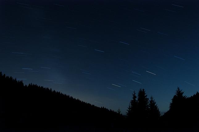 Nočný les