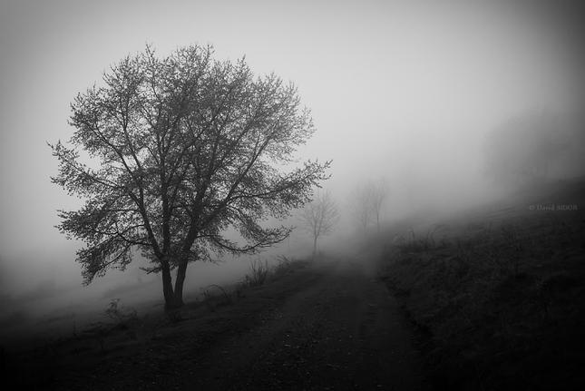 Jarné hmly na Gemeri