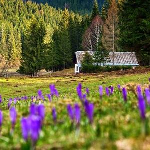 Jar v Samelovej doline ..