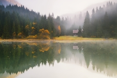 Pri zahmlenom jazere ..