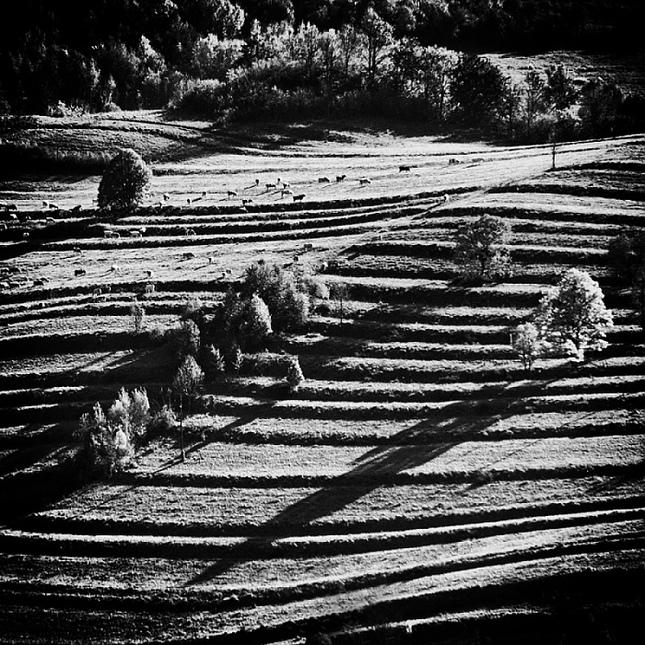 Na Slovenskej pastvine..