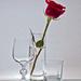 voda; sklo, a ruža...