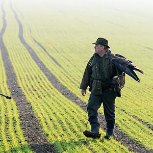 Lov na zajace