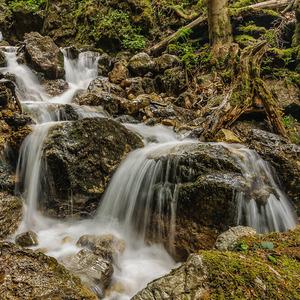 Dierový potok_4