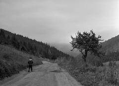 Na ceste 2