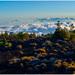 del Teide