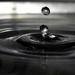 voda=život