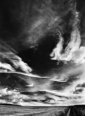 Oblakomalba