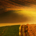 Zlatý horizont