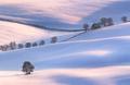 Posledná zimná