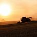 Vůně zemědělského léta