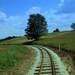 Oravska lesna železnica