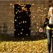 ... jesenné bláznenie ...