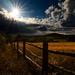 Slnko za plotom