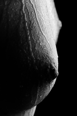 Nude detail