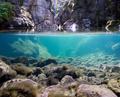 Podvodný svet raja