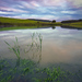 Vrbovský rybník 3