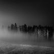 Z temnoty