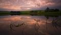 Vrbovský rybník 2