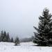 Prvý sneh pod Ondrejiskom