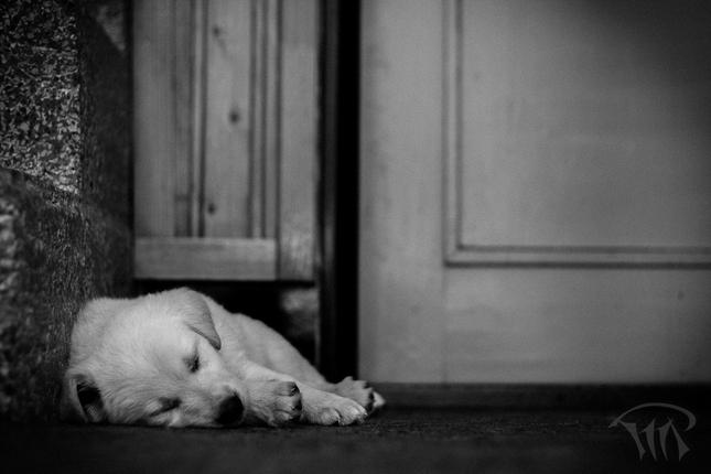 Poobedňajší odpočinok