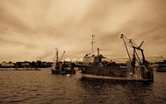 v prístave