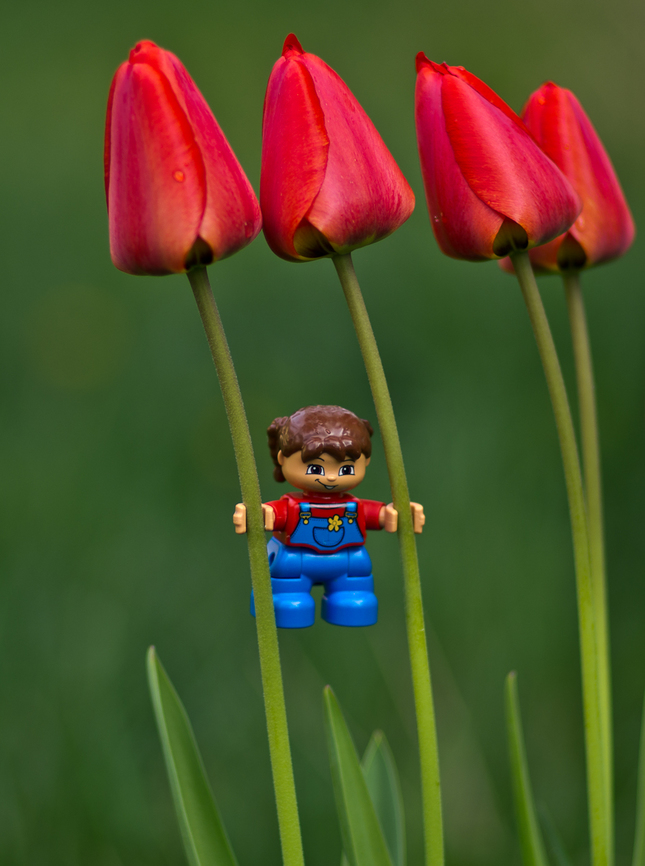 na zahrade-buď fit