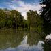 Príroda Malého Dunaja-zátoka