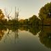 jeseň na Malom Dunaji I.