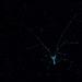 Súhviezdie - Big Spider