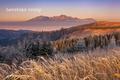 Levočské vrchy