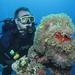 Potápač a sasanka