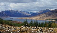 Skotska jar