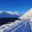 biele Skotsko