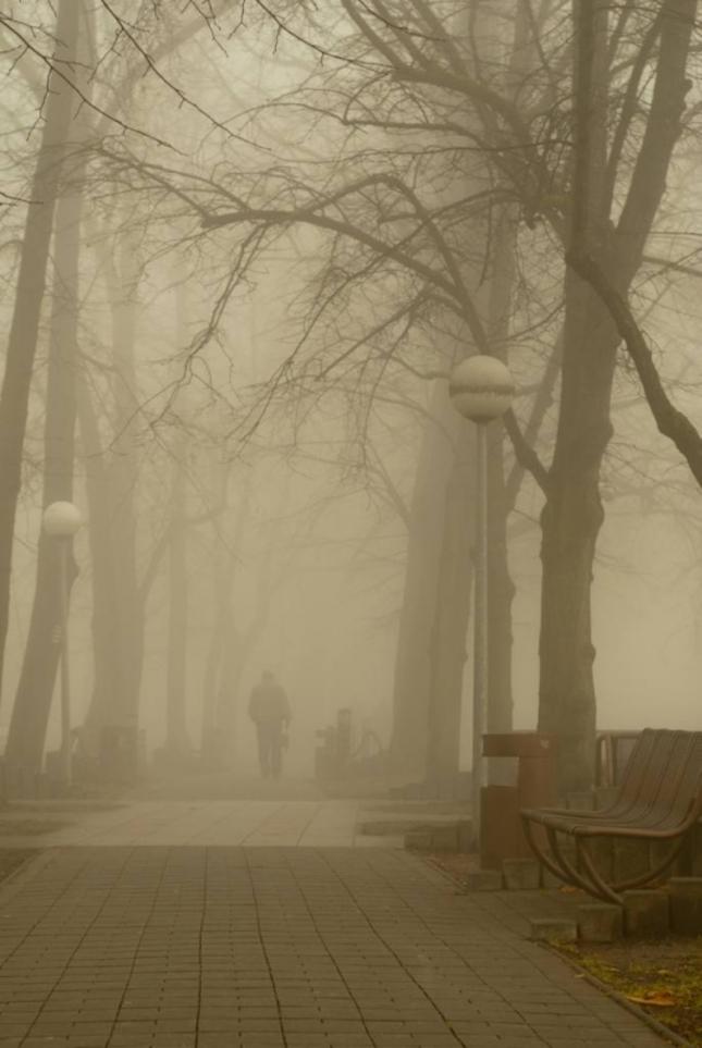 Ráno v jesennom parku