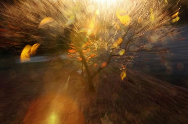mystérium svetla