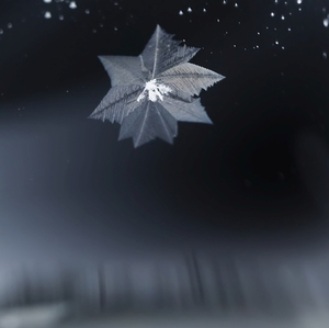 Padala hviezda na zimnú krajinu.