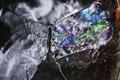 ľadový motýlik