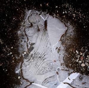 trpaslík na ľade