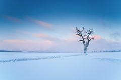 Zimné pohľady