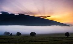 Prikrití rannou hmlou
