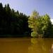 Kúsok prírody 3