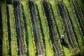 Z vinohradů jižní Moravy