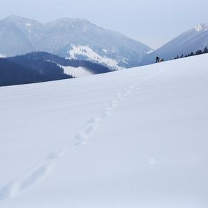 Zimná Vrátna  Dolina
