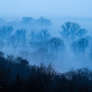 Obry v hmle