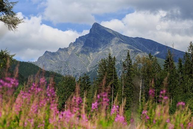 Kôprova dolina, Liptov, Kriváň