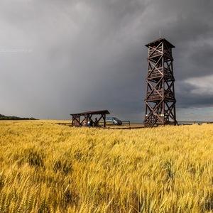 Vyhľadňa Radošinka