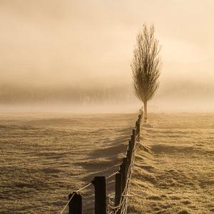 On a hazy morning