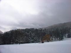 Zimná II.
